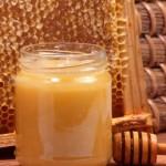 Le miel contre les superbactéries